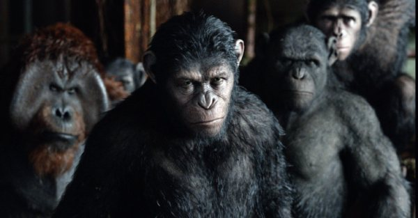 The apes led by Caesar.